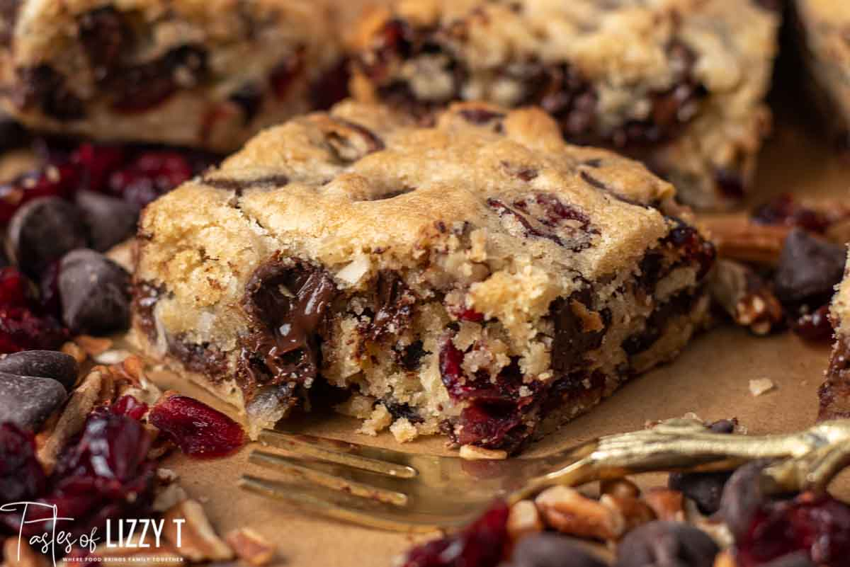 Chocolate Chunk Cranberry Coconut Blondies